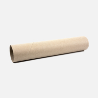 Paper towel roll (inner)