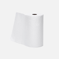 Paper towel (used)