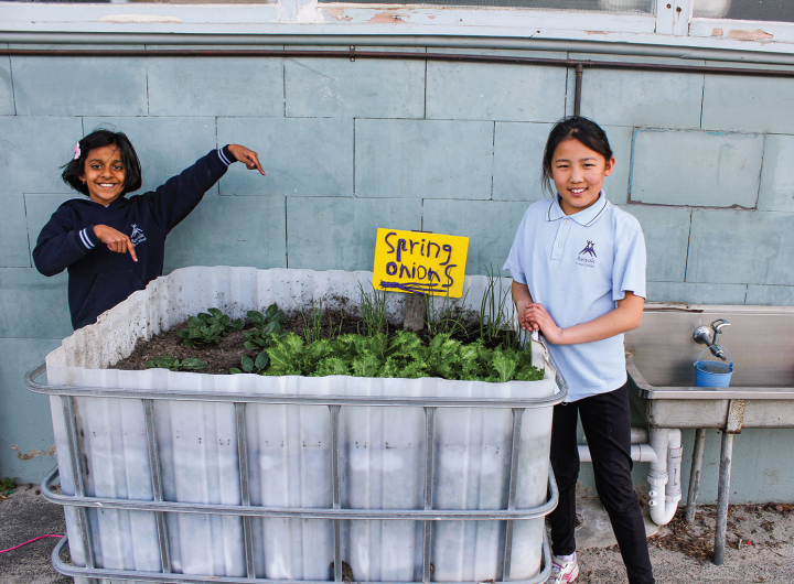 Two Banyule primary school students standing next to a planter box growing spring onions.
